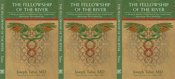 Fellowship of the River (book cover - three times - side by side)