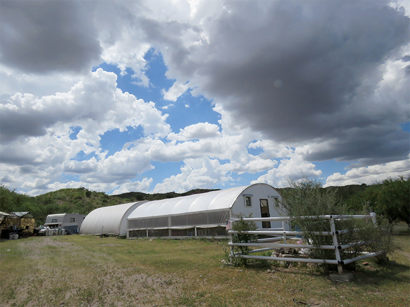 Photo showing Peyote Way Church greenhouse under cloud-scudded sky